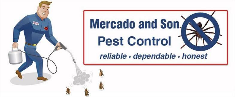 Best Emergency Pest Control Kill Bugs Ants Cockroach Roaches Rodent Mouse Rats Mice Bees Control Pest Exterminators Home House Residential Commercial In